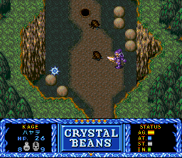 Crystal Beans From Dungeon Explorer (SNES)